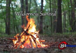 wilderness survival 365preppers.com