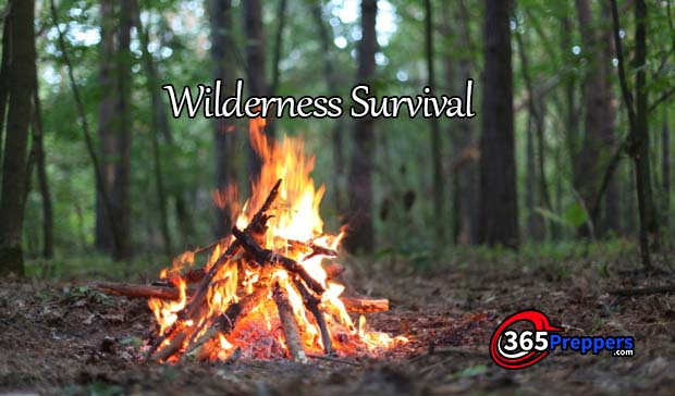 wilderness survival 365preppers.com