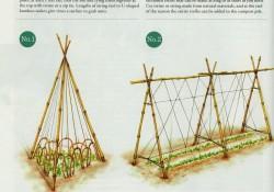 Building a pea trellis