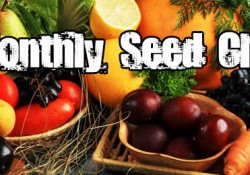 365preppers why should I join a seed club