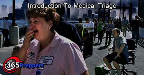 introduction to medical triage